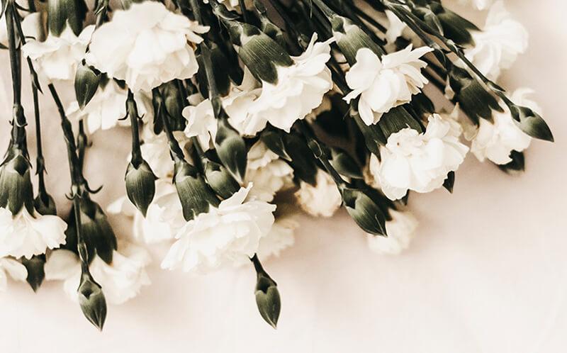 statistikker og analyser - Buskerud begravelse