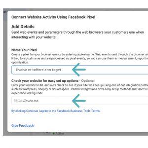 Business manager facebook pixel navn og link